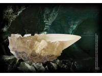 Harry Potter Coppa Di Cristallo Replica 18 Cm Noble Collection